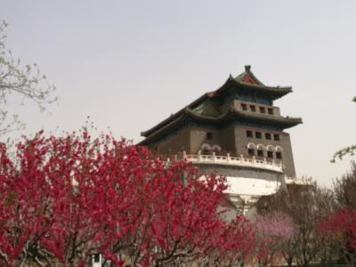 北京旅4 - 大屯路東→前門→北京南