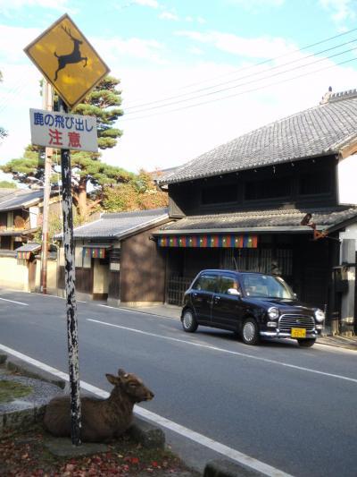 ヒガエリ ナラノタビ 2008.10 三回めのひとり奈良はゴールデンルート+佐保路