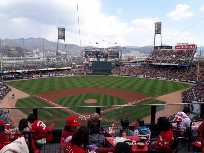 広島で杉オメライブと野球観戦