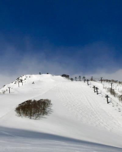 3月で新雪なんて~ラッキーよね!! ☆白馬東急ホテルシャモニーの朝食が美味しい(*'▽'*)/でも…。