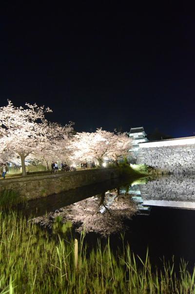 2019年4月4日 福岡 さくら祭りに行ってきました♪
