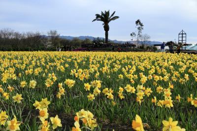 和泉リサイクル環境公園