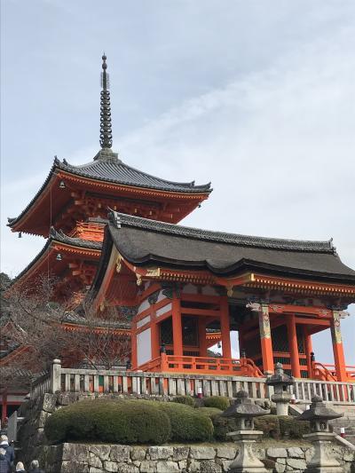 春の京都で観光とグルメを満喫2019🎵②