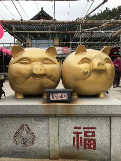 友人達と 釜山 旅行②。ここから 所定の人員が揃って旅行となります。