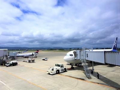 【2018年6月】日本をあちこち飛ぶ旅(1)まずは関東→仙台、からの宮古島