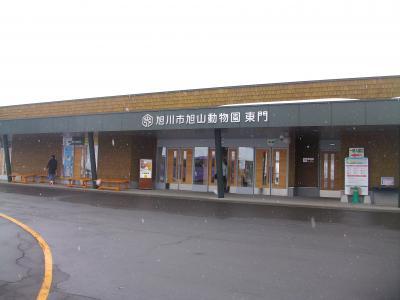 夫婦でのんびり旅しよう会 2019 (北海道の旅) 余市・小樽、旭山動物園 後編