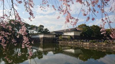 <大手町・靖国神社・飯田橋>桜花爛漫 街歩き