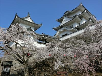 伊賀(上野城)
