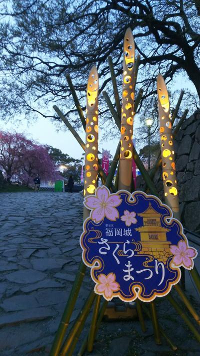 春の福岡【福岡地域】