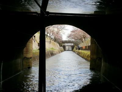 2019年 3月 京都府 滋賀県 びわ湖疏水船