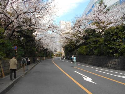 品川・大崎桜咲く