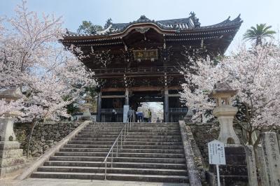 御朱印ガールが行く!2019②桜の粉河寺と一目十万本の桃源郷