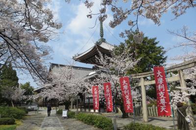 2019春の京都 桜を静かに愛でる穴場旅/前半