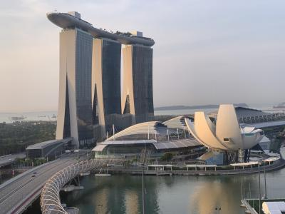 JGC修行②/おひとりさまシンガポール2日目・前編~世界遺産シンガポール植物園を散策('ヮ' )