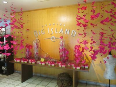 ハワイ3島巡り(11)レインボー滝、ヒロファーマーズマーケット、ビッグアイランドキャンディーズ
