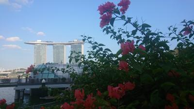 シンガポール(シンガポール)3泊4日[2-3]…マーライオン公園とシンガポール2大ナイトショー