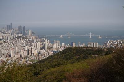 釜山観光(南浦洞、釜山タワー、松島スカイウォーク、龍宮寺、梵魚寺)
