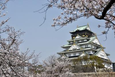 桜満開の大阪~日帰り旅