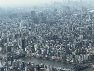 東京散策/東京スカイツリー&帝釈天