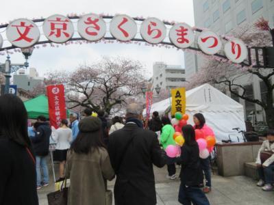 目白駅前から目白・目赤・目黄不動巡り護国寺・吉祥寺を参拝・散策して文京さくらまつりを見ました