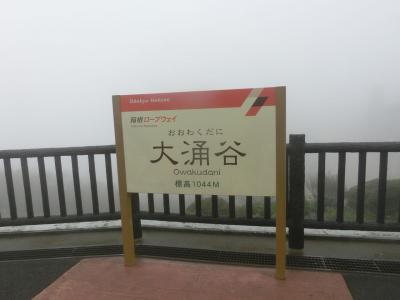 箱根一泊旅行Vol.2[大涌谷編](2018年8月)