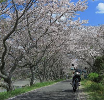 森町・大井川ツーリング 2019