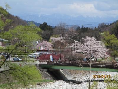 桜には遅く、花桃には早い昼神温泉で湯多利