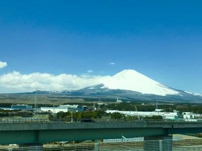 焼津周辺の旅