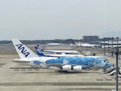 ふらっとドライブ 成田空港