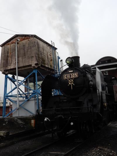 真岡鐵道「SLもおか号」見学と天然温泉堪能の旅