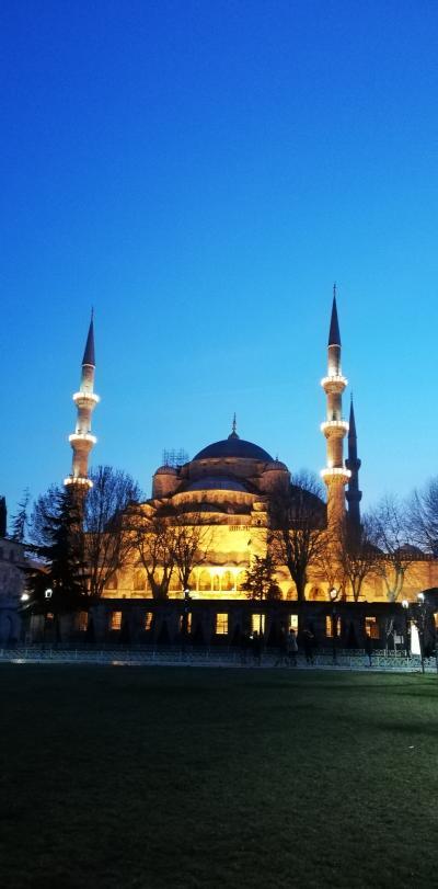 世界一周~ビジネスクラスで11ケ国周遊⑪~(中東編その6)トルコ移動