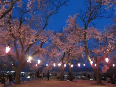 '19 信州 桜&城めぐり7 伊那市 うしおのローメン&春日公園の桜ライトアップ