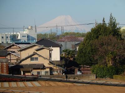素晴らしかった富士山