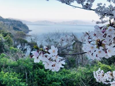 千本桜とメバリング