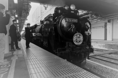 [4トラ鉄道部オフ会] 週末パスで巡る関東甲信越(初日-前編) 上州最強コンビ「SLぐんまみなかみ」&「登利平・鳥めし」