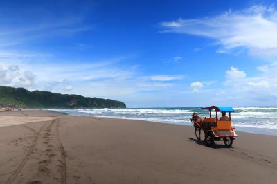 1歳4か月の娘と旧正月インドネシア16★空港に行く前にビーチへ! ~Pantai Parangtritis~