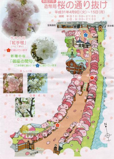 造幣局桜の通り抜け 2019 +とある休日の出来事(関西編Ver.10)