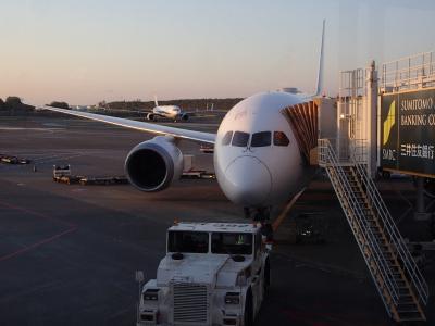 JL809夜便787-8機材にて成田から台湾桃園へ(137回目)