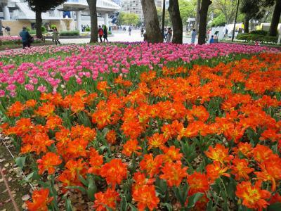 ガーデンネックレス横浜YOKOHAMA2019