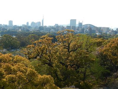 久しぶりに九州・福岡へ旅行しました③福岡城跡訪問‥多聞櫓~本丸跡