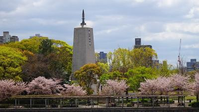 大阪城公園の花見をしました 下巻。
