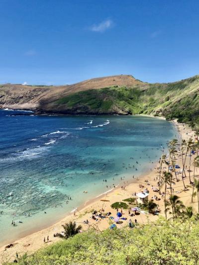 ꙳✧˖°ハナウマベイ꙳✧˖° in Hawaii 2019