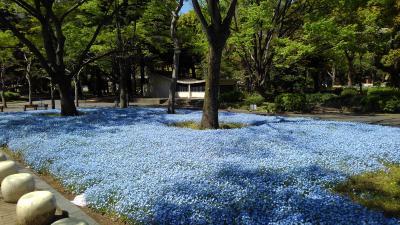 東京・日比谷公園