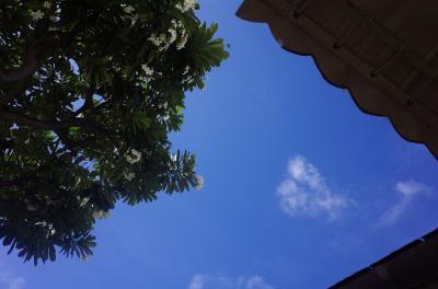 ハレクラニ&トランプ&カハラに泊まる 乳児連れハワイ8泊10日 ④ザ カハラ ホテル&リゾート編つづき