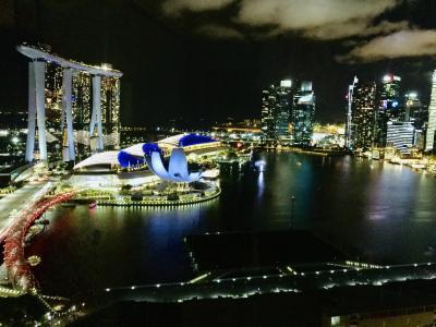 6回目のプーケット~3回目のシンガポール  *シンガポール編