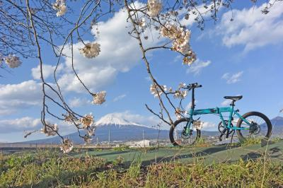 自転車でGO! 2019.04.02 桜が咲く潤井川沿いを走りました