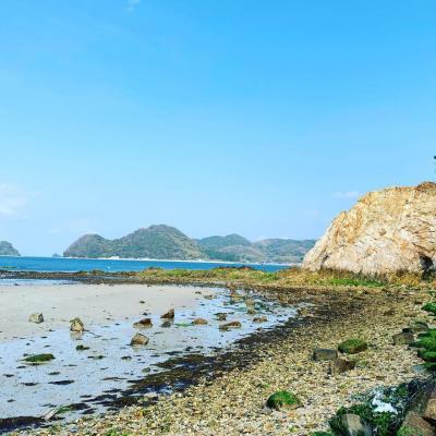 山口♡春の周防大島