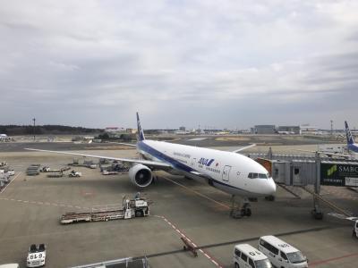 2019 真冬のニューヨークへ行ってきました6~帰国編~
