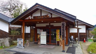 北近畿への日帰りバス旅行(06) 京都府緑化センターの枝垂れ桜 下巻。