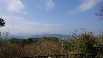 三週間連続高尾山へ登山へ行きました。